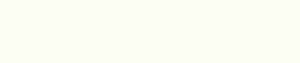 9010 Reinweiss perl  23 x 1,0 mm